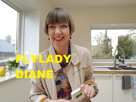 fly lady diane